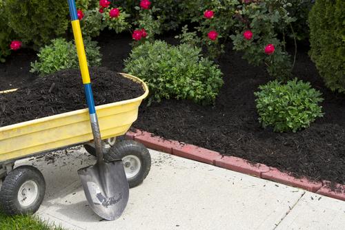 choosing the best mulch