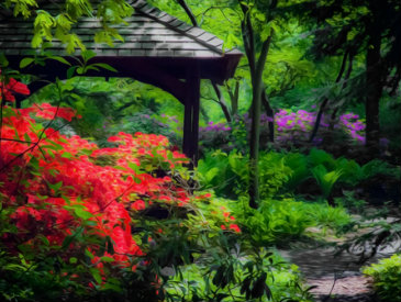 outdoor landscaping Atlanta