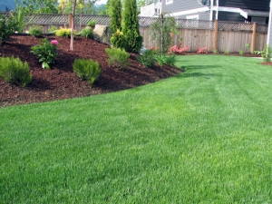 commercial landscaping firm in Atlanta